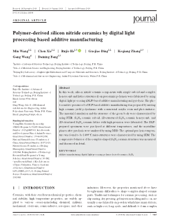 Polymer‐derived silicon nitride ceramics by digital light processing based additive manufacturing Pages 1-12